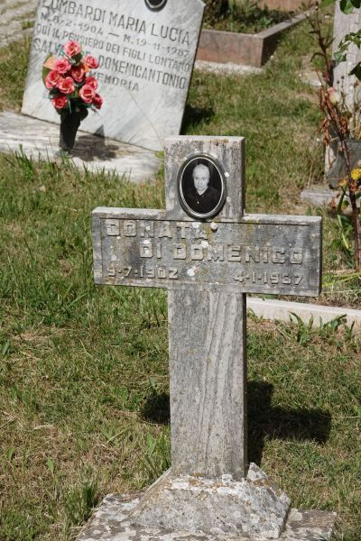 A researcher was able to photograph my Great Aunt Donata's grave for me, which provided her date of death and her photograph.