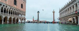 Support NIAF's Venice Relief Fund Today