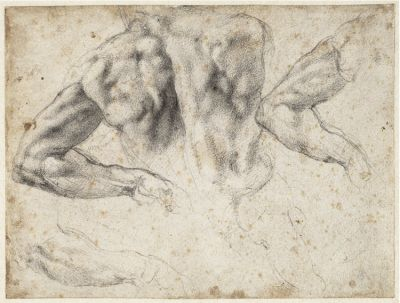 Study of the back and left arm of a male nude for the tomb of Giuliano de' Medici, 1523–24. Black chalk; 19.2 x 25.7 cm
