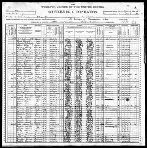 "In this 1900 Census record of the Italian immigrant community of Lowellville, OH,  Census Taker Porter Watson struggled to record the Italian population and is a good illustration  of the challenges in using Census records. For example, he recorded the name of a family  from Italy as ""Fitzdale."""