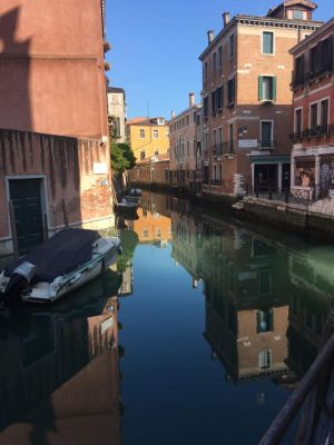 A Positive Side to the Virus Disaster in Venice?