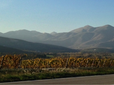 Traveling along Abruzzo's Wine Route